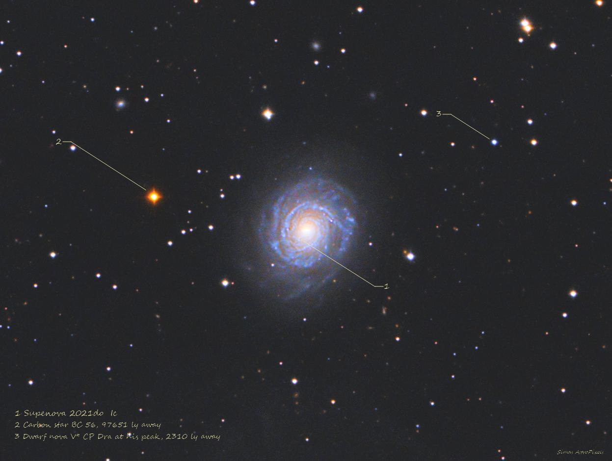 NGC 3147. Three kind of weird stars,                                Simas Šatkauskas