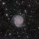 Messier 74 Spiral Galaxy,                                Miles Zhou