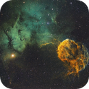 Jellyfish Nebula,                                Bill Long