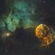 Jellyfish Nebula,                                Bill Long