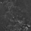 Campo esteso NGC6888,                                Federico Francesco Firpo