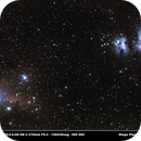 Orion, Horse Head, Flame Nebula,                                Diego Planche