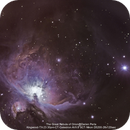 Final Attempt at The Great Nebula of Orion,                                Darien Perla