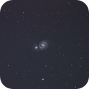 M51,                                AlbertNewland