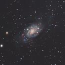 NGC2403 Intermediate Spiral Galaxy,                                Michael Broyles