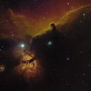 Flame and Horsehead Nebula in HSO,                                Joel Shepherd