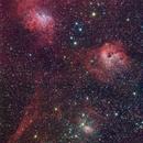 FLAMING STAR NEBULA - IC405/410,                                Wilson Lee
