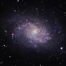 M33 Triangulum Galaxy,                                David Schlaudt