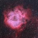 Rosette Nebula,                                kmachhi