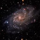 M33 - HaLRGB,                                Vincent Savioz