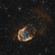 Abell 21 (SH2-274) - The Medusa Nebula (Bicolor),                                Frank Breslawski