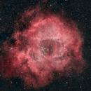 Rosette Nebula, SHO + natural,                                stein