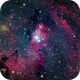 NGC2264  and the Christmas tree cluster,                                YangKW