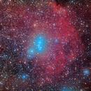 Orions Kopf / Orion's Head (SH 2-264),                                firstLight