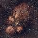 NGC 6334  The Cat's Paw Nebula,                                Ray Heinle