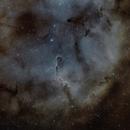 Elephant trunk nebula  IC1396,                                Peter Horstink