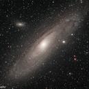 Andromeda,                                Granwehr Patrick