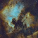 North America Nebula, Pelican Nebula,  NGC 7000, IC 5070,                                rallyho
