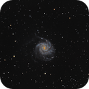 Pinwheel Galaxy M101,                                Jason Rhodes