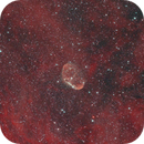 The Crescent Nebula Within Red Clouds,                                Florian Rünger