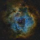 Rosette Nebula,                                Niklas Walther
