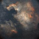 North American & Pelican Nebulae,                                Seymore Stars