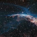 Like a blue bird in the Veil nebula East part,                                Arnaud Peel