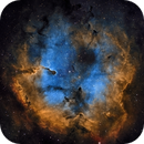 Elephant Trunk Nebula IC 1396,                                Jyrki