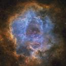 Rosette Nebula,                                Chris Plonski