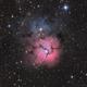M20 - The Trifid Nebula,                                lefty7283