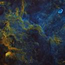 Crescent and Tulip Nebulae Widefield,                                Frank Turina