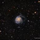 M101, The Pinwheel Galaxy in LRGB,                                Scott