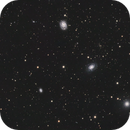 Galaxy Cluster Abell 1264,                                Neal Weston