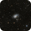 NGC 772 - The Nautilus Galaxy,                                Casey Good