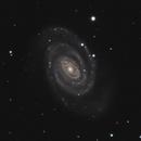 NGC 5364,                                Gary Imm
