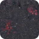 Cat's Paw and Lobster Nebula,                                Olga W. Ismael