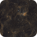 IC 417, NGC 1931 / Spider and Fly Nebula,                                Florian_Pieper