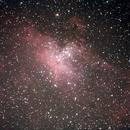 M16 (Eagle nebula),                                Thierry Noel