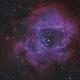 Rosette Nebula - HOO,                                Miroslav Horvat