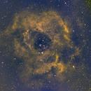 C 49 Rosetta Nebula-Ha-HHO-Meade 80 ED triplet-Orion flattener-ASI 1600-MM-Pro,                                Adel Kildeev