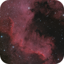NGC7000's Wall in Cygnus,                                Jonathan W MacCollum