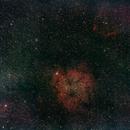 IC 1396,                                Leigh Walker