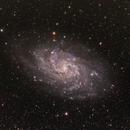 M33,                                TimothyTim