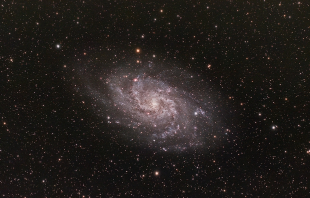M33,                                TimothyTim