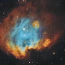 Monkey Head Nebula,                                Ezequiel