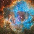 Rosette nebula SHO,                                Byoungjun Jeong