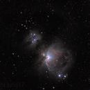 M42 - Orion Nebula,                                Bill Dally