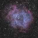 Rosette Nebula w/ Canon 5D Mark III,                                Tony Blakesley