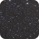 The Head of Orion Region (mosaic):  B35,                                Jan Curtis