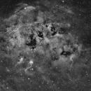 IC 410 - Tadpole Nebula in H-Alpha,                                Frank Breslawski